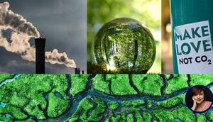 Header zum Webinar mit Fotos von Industrie-Schornstein, Wäldern u.a.