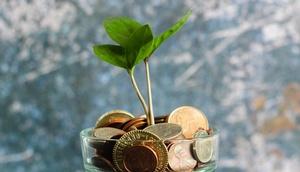 aus einem Münztopf wächst ein Pflänzchen