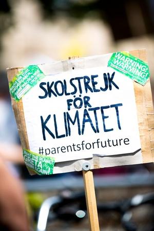 Plakat: Skolstrejk för Klimatet (Schulstreik für das Klima), © Photo by Markus Spiske on Unsplash