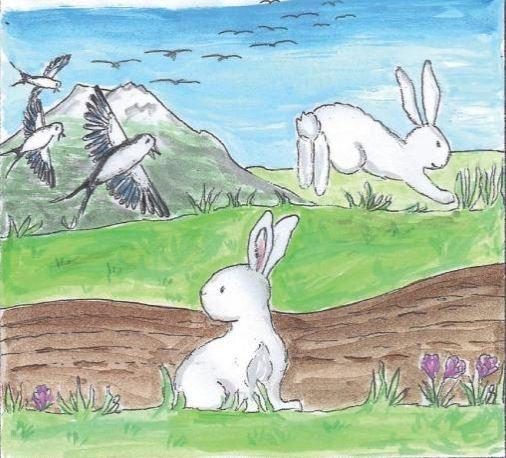 Abbildung aus dem Buch, 2 Häschen und Schwalben , © Verlag Tredition