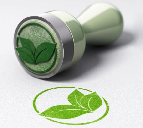 Stempel und Stempelabdruck mit grünem Blatt, © VKI Website, Olivier Le Moal Shutterstock